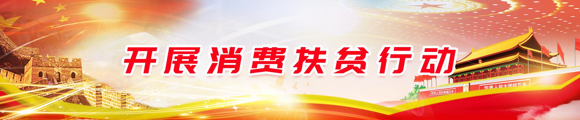 中国社会扶贫网认证产品