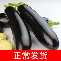 优质茄子一斤装(本店铺蔬菜满50元同城免费送) 500g