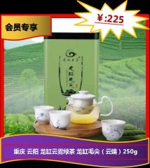 ★重庆 云阳 龙缸云雾绿茶 龙缸毛尖(云端)250g 250g