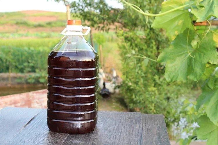 农家鲜榨菜籽油5千克一桶