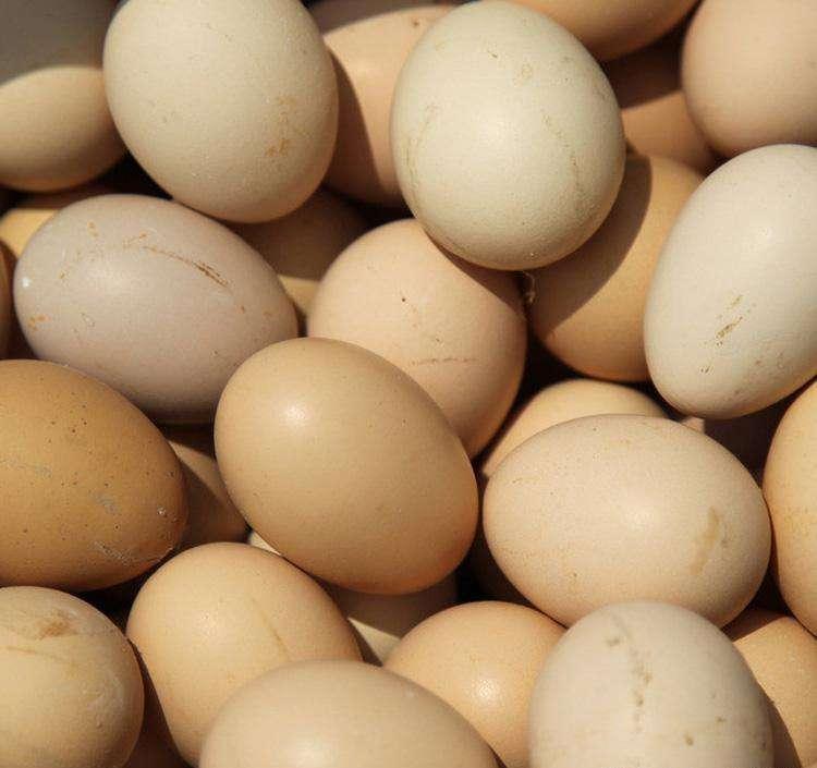 西牛村土鸡蛋 个